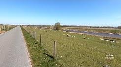 43 km Fahrradtour Runde von Norddeich nach Greetsiel Kutterhafen Radroute an der Küste Ostfriesland