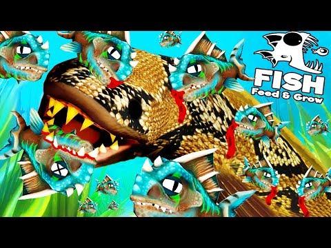 INTENTAMOS DEVORAR A LA SERPIENTE-PEZ   FEED AND GROW FISH