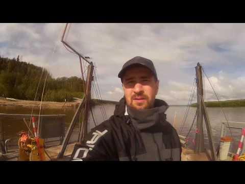 Рыбалка на Иртыше июнь 2019, килограммовые  окуни, язи  и щука. С спиннингом по протокам