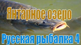 Трансляция игры Русская рыбалка 4 РР 4 РЫБАЛКА НА ЯНТАРНОМ ОЗЕРЕ