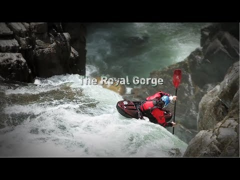 The Royal Flush (Best Short Film of the Year Awards 2012 - Entry #17)