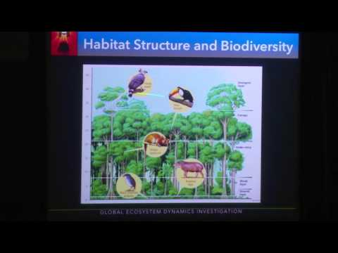 Vegetation Structure/Biomass/GEDI