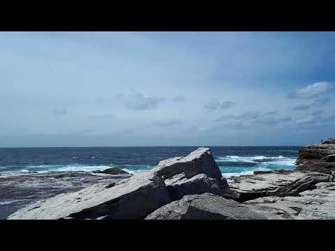 Little Bay Beach to Botany Bay National Park Coastal Walk