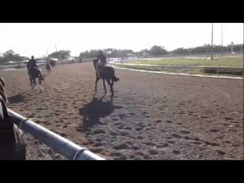 ROCK HARDER - 1-18-12 - Fair Grounds Race Track