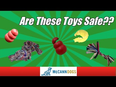 dangerous-toys-for-dogs