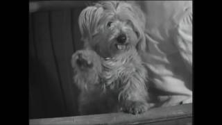 Captive girl. 1950.