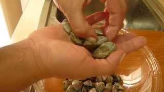 Cucinare le Vongole Clams Recipe Морские Ракушки Рецепты