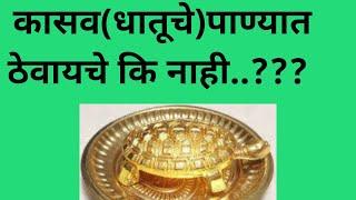 कासव देवघरात कोठे ठेवू?पाण्यात ठेवावे का?/kasav devghrat panyat thevave ka?
