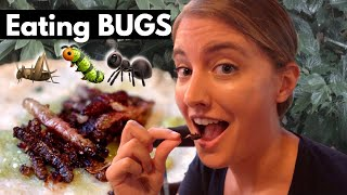 Trying Bugs & Pulque for the First Time | Escamoles, Chapulines, Chinicuiles in Playa del Carmen