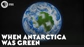 When Antarctica Was Green