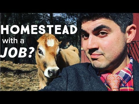 How To Homestead When You Have A Full Time Job