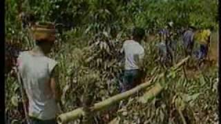Marcos papers and Insurgency in the Philippines (1986)