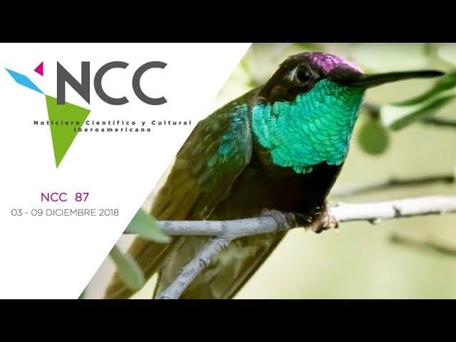 Noticiero Científico y Cultural Iberoamericano, emisión 87. 03 al 09 de diciembre 2018.