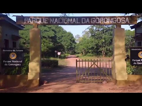 Renewed conflict threatens Mozambique's Gorongosa park