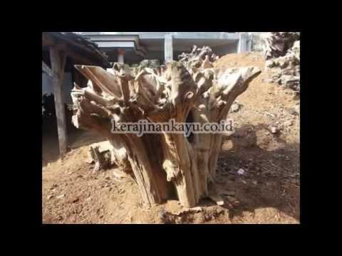 Bar Table Base Natural Free Form Sculpture Teak Root Wood