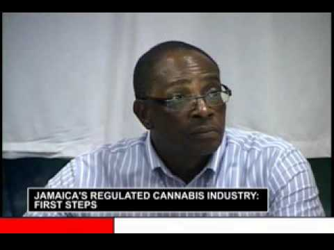 Jamaica's Regulated Cannabis Industry 2days Conference prt 3