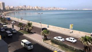Welcome to Alexandria