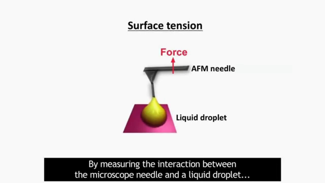 Watch How to Measure Surface Tension video