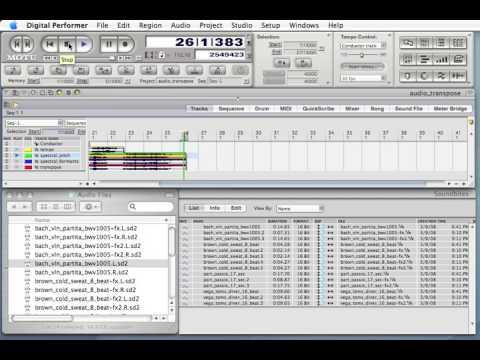 dp audio transpose