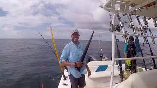 Swordfish Trip June 2018