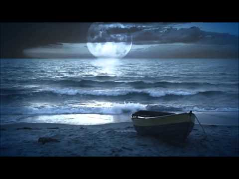 HD Video Background Moonlight Beach and Beautiful Music
