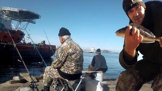 Городской Окунь СЛОМАЛ СПИННИНГ Рыбалка на ОСТРОВЕ Русский под мостом
