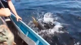 Fishing fails compilation