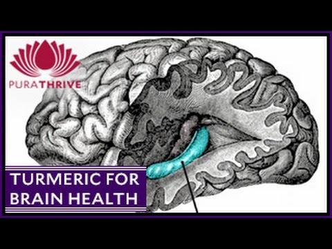 Turmeric & Brain Health: Neurogenisis | PuraTHRIVE- Thomas DeLauer