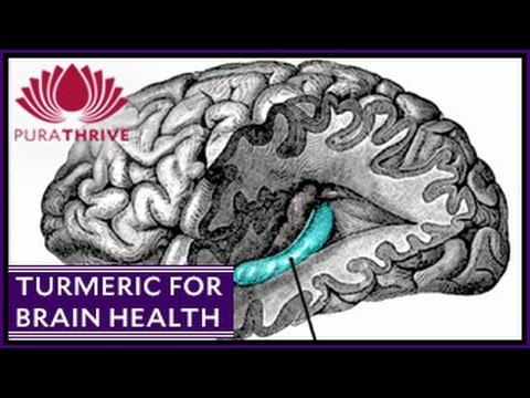 Turmeric & Brain Health: Neurogenisis