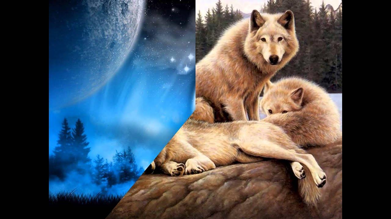 Lobos Bonitos