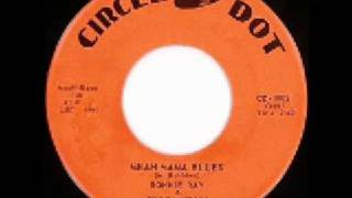 Ronnie Ray - Mean Mama Blues