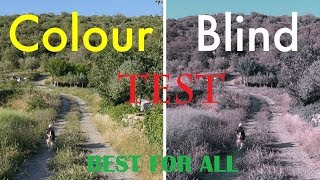 Color Blindness Test|Easy|NaturalSafe Ways| tritanopia| color vision deficiency| colorblind