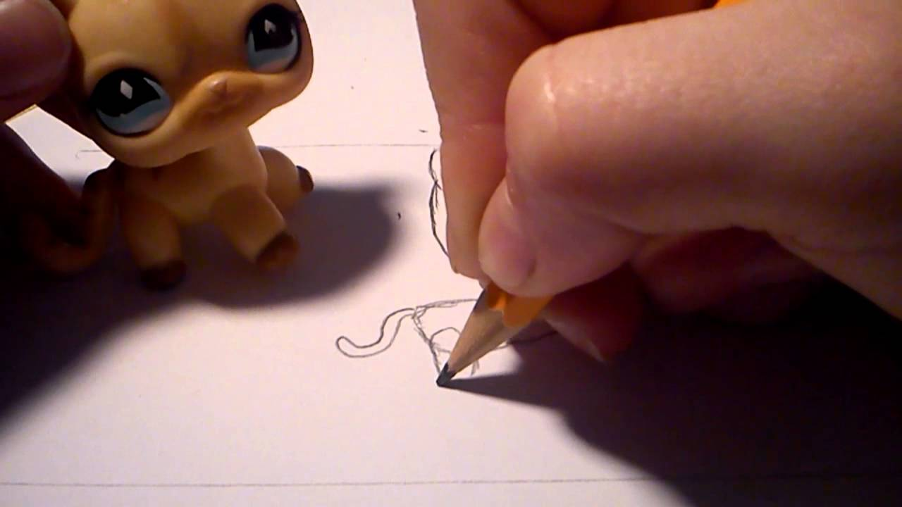How to draw an lps cat (part 1) #1