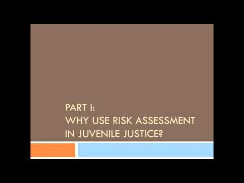 Risk Need Responsivity: Managing Risk & Mental Health For Juvenile Justice-Involved Youth