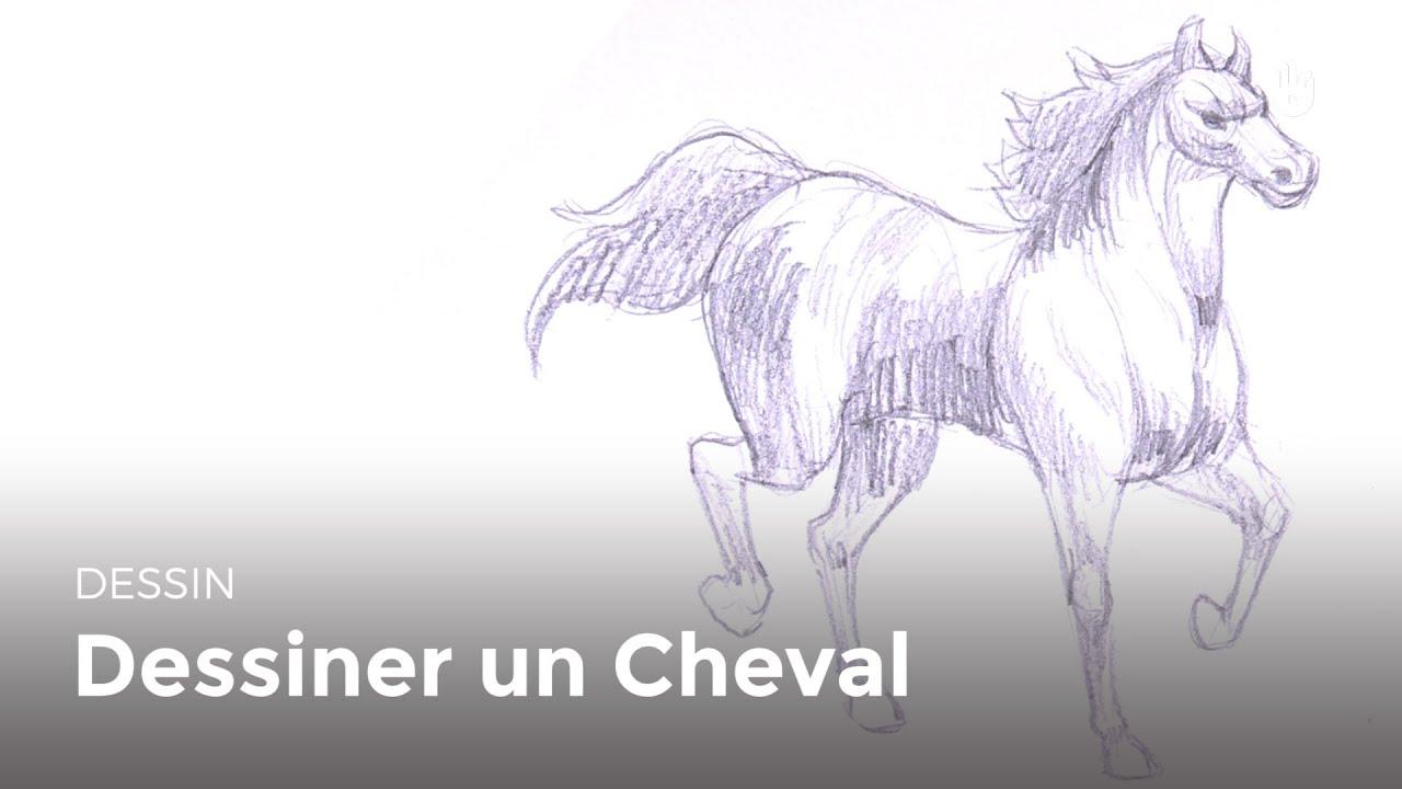 Dessin dessiner un cheval techniques de bases hd - Dessiner un cheval simple ...