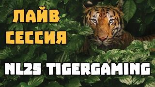 Стрим: Лайв сессия Dima23 NL25 Tigergaming