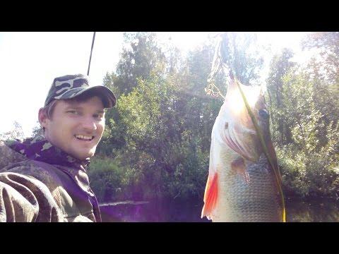 Рыбалка на реке пинега