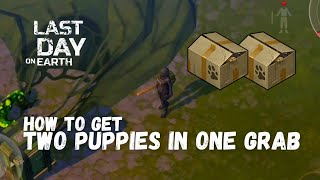 LDOE: How to get Puppy in Airdrop + TWO PUPPIES IN ONE GRAB (v.1.7.12) (Vid#18) !!