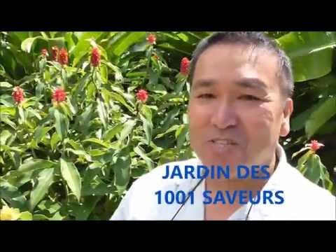 a la decouverte du jardin des 1001 saveurs avec reussir