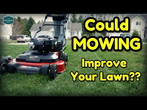 Lawn Care Basics – How to Mow Your Lawn