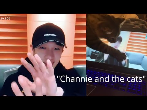 Channie And The Cats