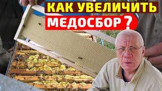 Работы на пасеке в июле Когда не хватает силы семьи,а мёда хочется взять больше