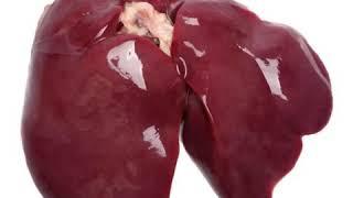 10 Benefits of Chicken liver(eat chicken livers for health benefits)