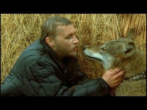 Саундтрек весьегонская волчица