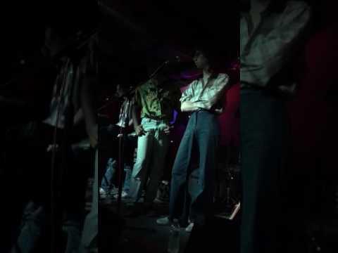 How Lucky Am I? -The Lemon Twigs - Live mp3