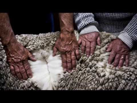 History of Knitting | WE ARE KNITTERS