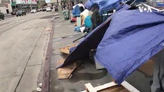 好莱坞为洛杉矶无家可归者送去节日欢乐