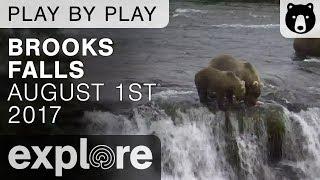 Brooks Falls 05 - Katmai National Park - August 1st, 2017 thumbnail