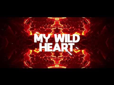 Factuel & PROVI - Wild Heart feat Desirée Dawson ChillYourMind Release