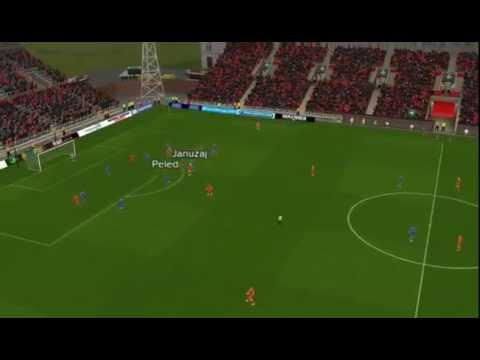 Januzaj best goal